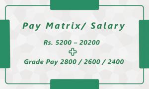 Pay Matrix / Salary from Innovation academy