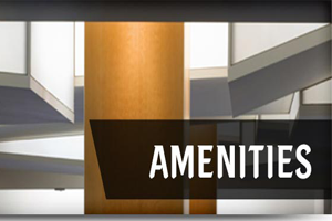 Attractiveness of Innovation academy 2019